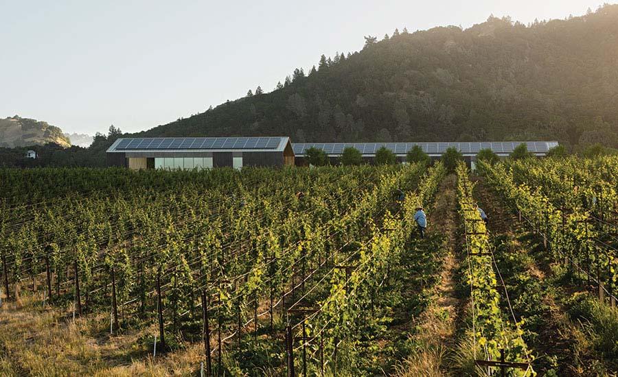 Silver Oaks Winery.