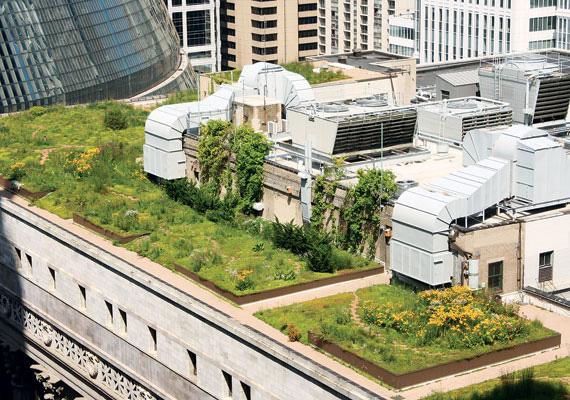 Landscape architect bureau of labor statistics how to become a