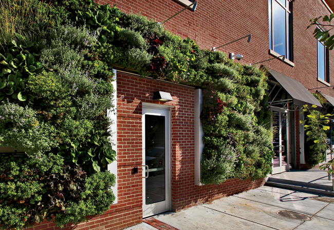 Living walls incorporate herbs and other edibles into two sides of the building.