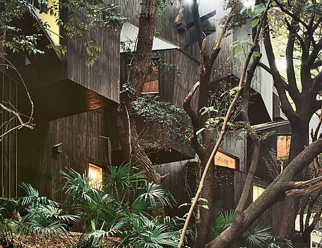 This six-unit housing compex appears to stand in a jungle, but it actually sits in the heart of Tokyo. Embedded in a grove of mature trees, the building responds to the setting with eight cantilevered
