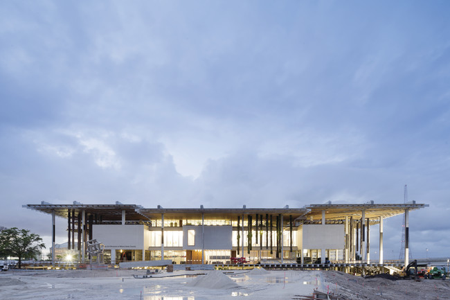 First Look: Herzog & de Meuron's Perez Art Museum Miami