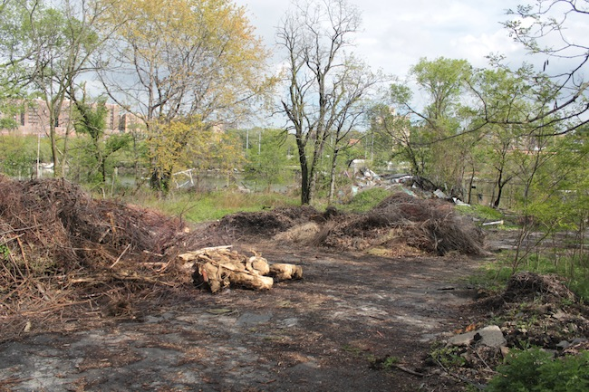 The site, which once boasted a boathouse, became an illegal  garbage dump. NYRP has been working for nearly two decades to green the  area.