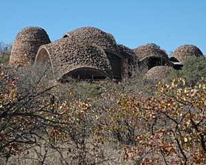 Mapungubwe Interpretation Centre in South Africa by Peter Rich Architects.