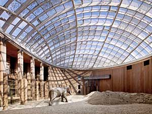 An elephant house designed by Foster + Partners for the Copenhagen Zoo