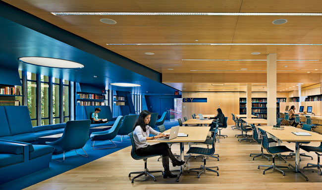 In the newly open reading room, two zones—a lounging zone rendered in blue and a studying zone characterized by wood paneling—are visually and spatially linked.