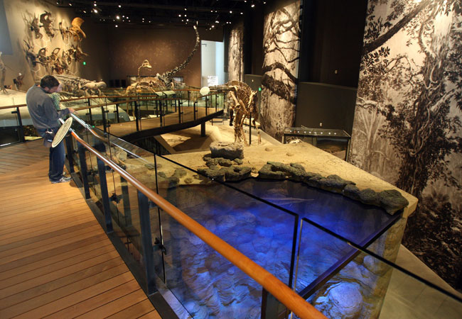 The exhibitions were designed by Ralph Appelbaum Associates and include a Past Worlds gallery that covers 225 million years of Utah history.