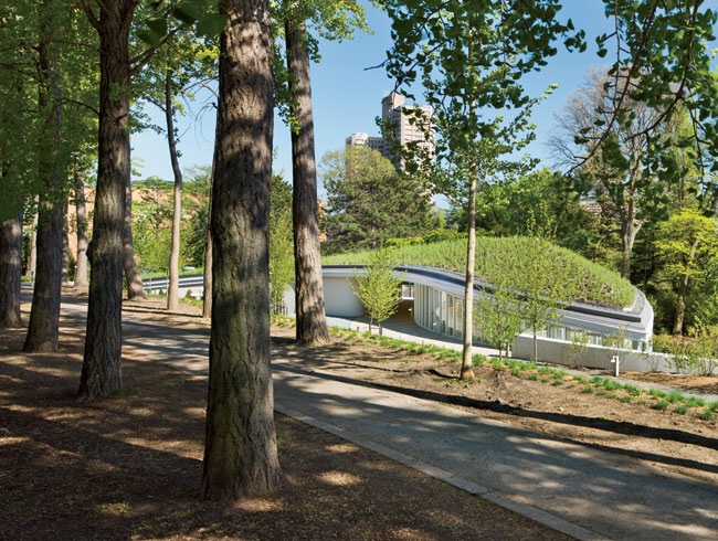 The green-roof portion of the building pushes up against an existing berm on top of which runs an all'e of ginkgo trees.