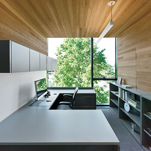 Cedar also lines the cubiform offices.