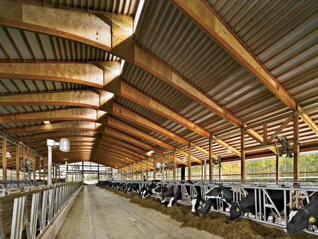Teaching Dairy Barn