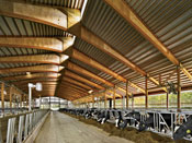 Teaching Dairy Barn
