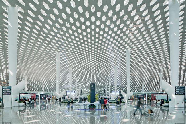 Types Of Canopy Architecture Gallery Of Quot Shell Lace