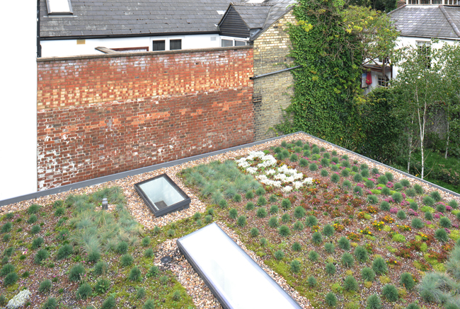 View from main living space to rear garden