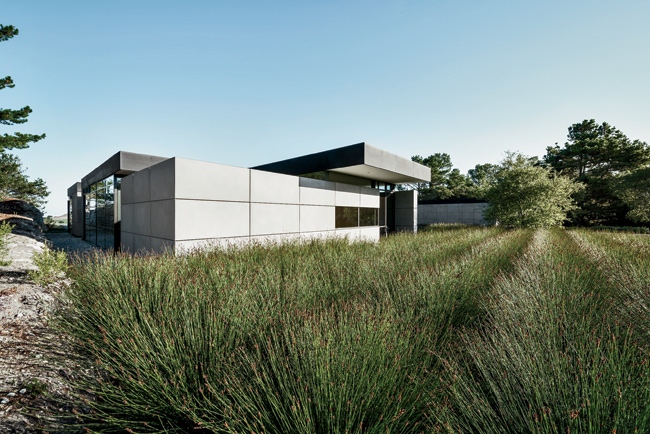 Landscape architects Bernard Trainor + Associates used native grass and drought-tolerant plants deftly to medi­ate the transition between house and wilderness.
