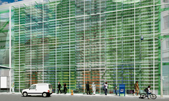 Brooklyn-based Kiss + Cathcart has designed a vertical-growth system that integrates hydroponic food production into a multistory, double-skin facade. Plants are grown on trays suspended on cables, wi