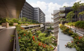 Biophilic Design Award