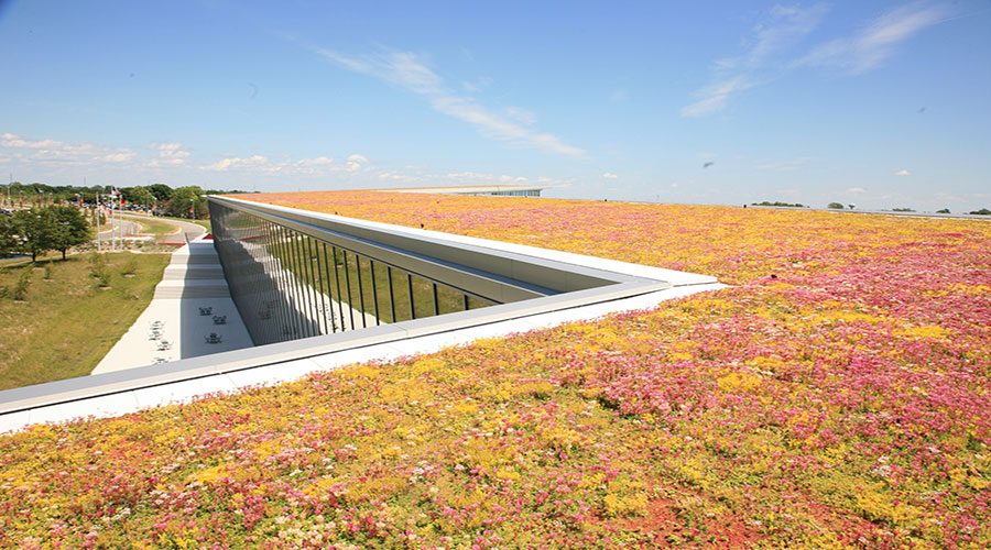 Ways to Design a Fire-Resistant Green Roof System